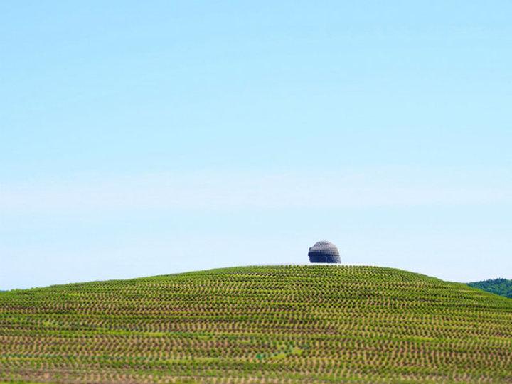 北海道で出会える安藤忠雄建築。摩訶不思議な頭大仏