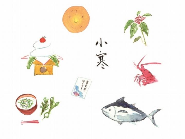 小寒の日からの過ごし方:春の七草のパワーで胃腸を整え、すっきりと新年を本格始動