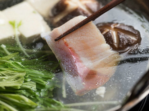 冬鍋の定番に。とろり濃厚な脂を楽しむプロ直伝・ぶりしゃぶレシピ