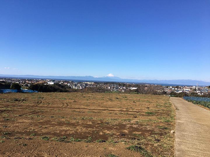 東京湾と相模湾が見渡せる高台の地から富士山が見えた【こぐれひでこの「ごはん日記」】
