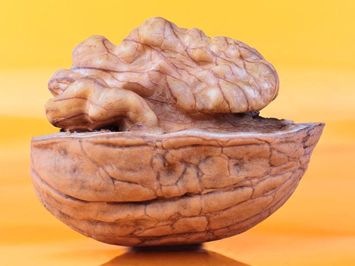 年を重ねるにつれて摂取したい!「脳にいい食べ物」6つ