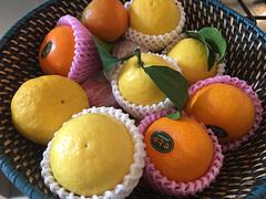 友さんが漢方薬と宮雑魚の柑橘類を持ってきてくれた【こぐれひでこの「ごはん日記」】