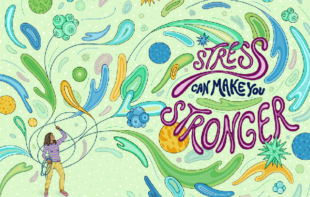 640_pv1217_stress_01