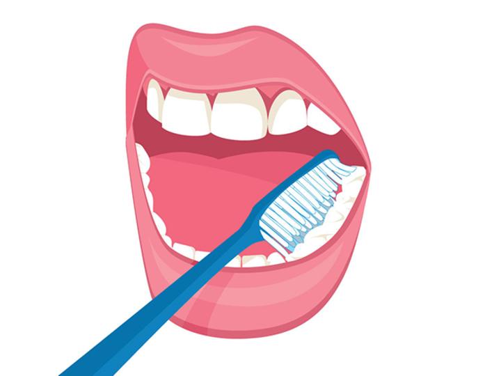 正しい歯磨き。歯垢をしっかり取り除く歯の磨き方とは?