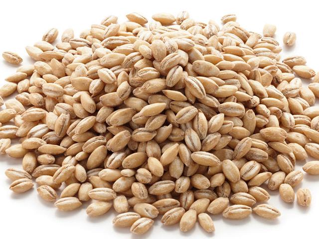 0313_shutterstock-barley-740