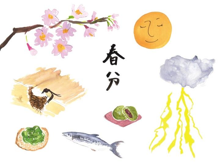 春分の日からの過ごし方:ハーブティーでストレス改善、未来への決意を固める