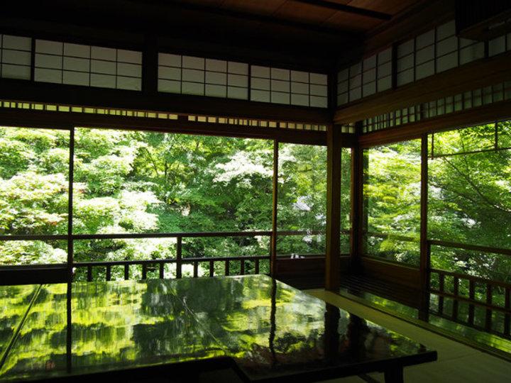 緑に包まれる京都・瑠璃光院。息をのむような美しさと静けさ