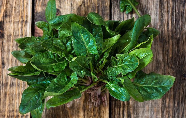 PMSFood_spinach_1000