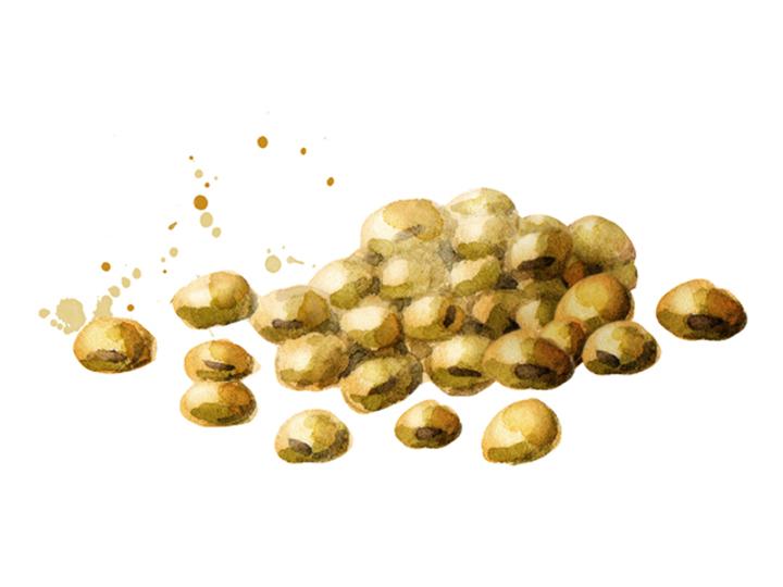 筋肉をつけたいなら「朝大豆」。大豆ファーストで「かくれ高血糖」を防ぐ