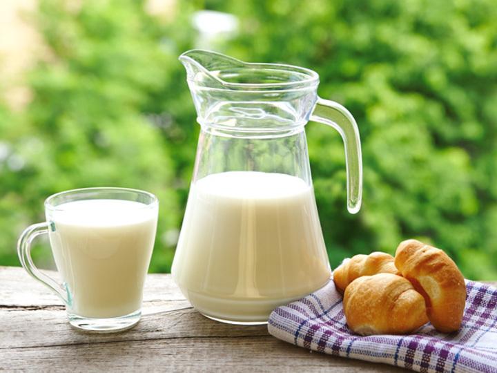 牛乳と豆乳、結局どっちを摂るべき? 気になる答えが明らかに