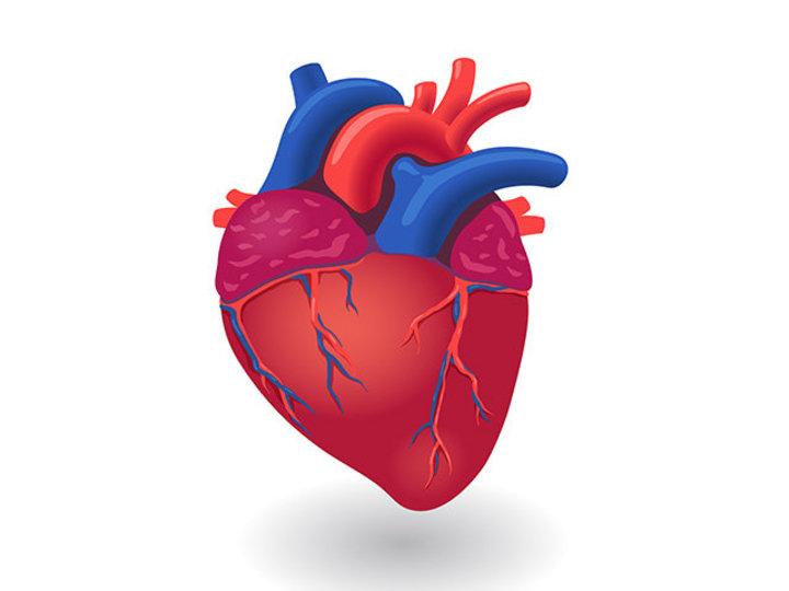 サインを見逃さないで。心臓病を防ぐ、10の身近な方法