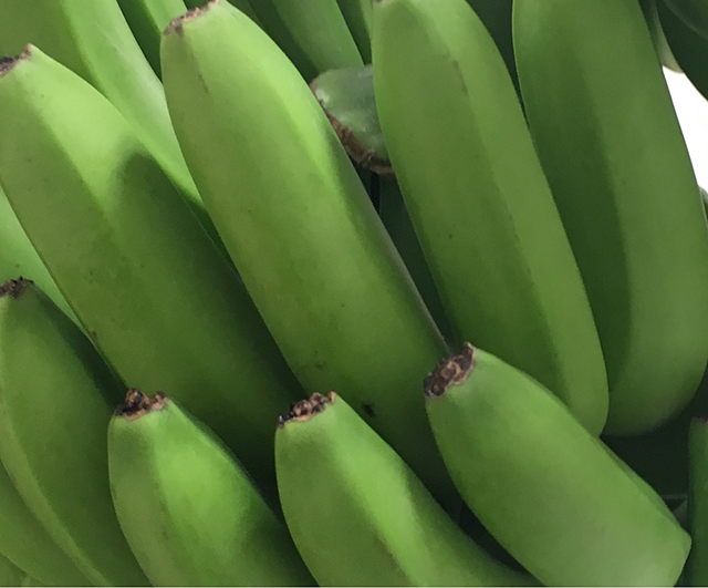 20180707_banana_4