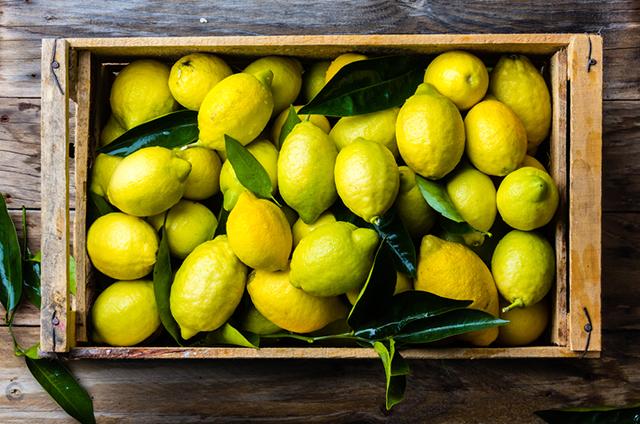 201807_lemon_4