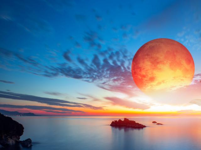 7月28日は皆既月食! 夜明け前の...