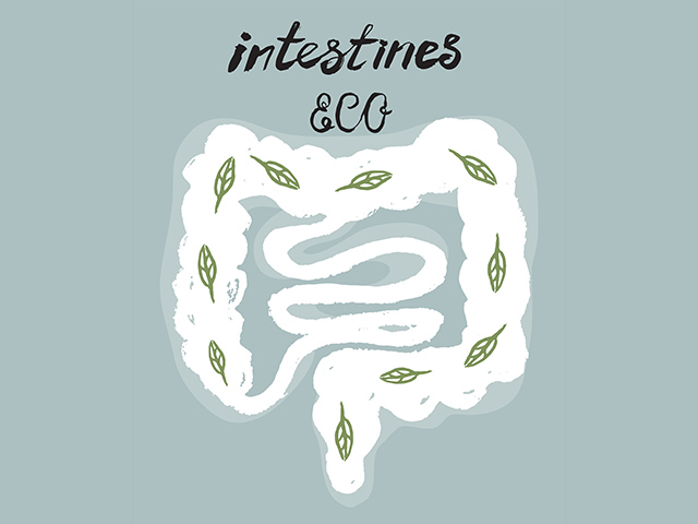 20180730_intestine_brain_3