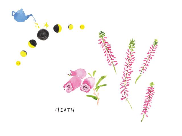 201809HEATH