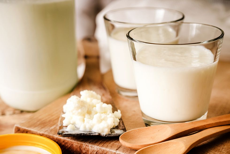 kefir-probiotic-food-1537308541