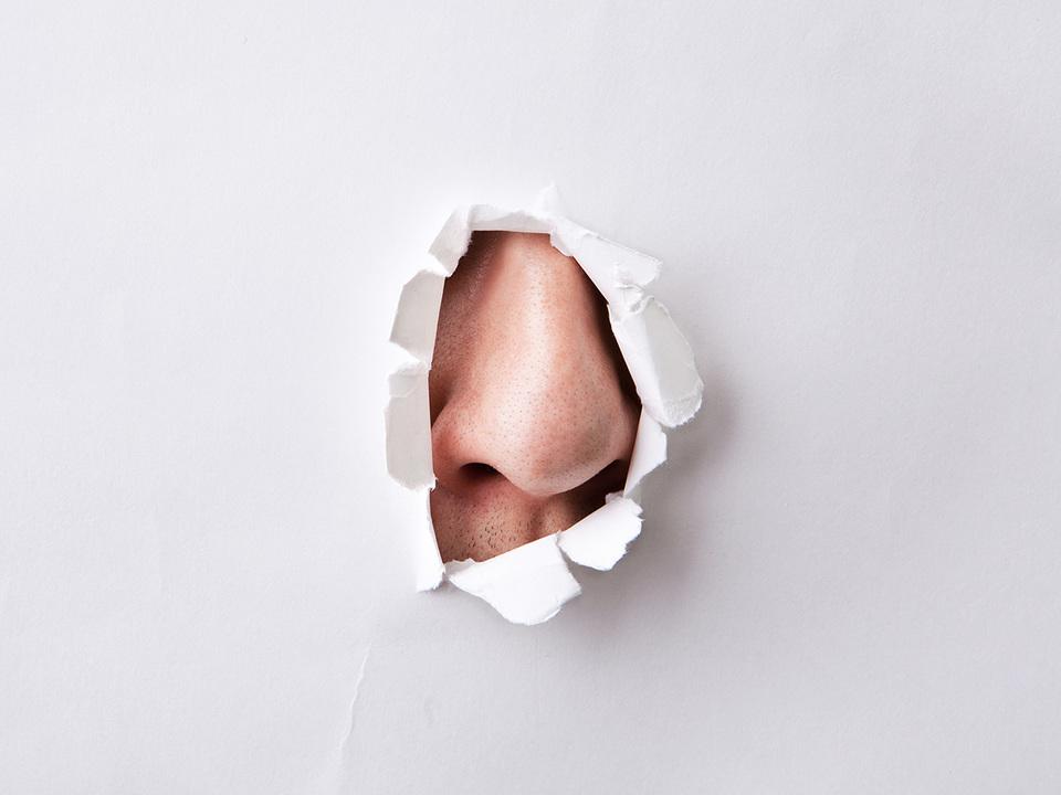 破れた紙の穴から覗く鼻
