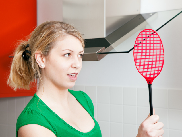 キッチンの虫を退治する女性