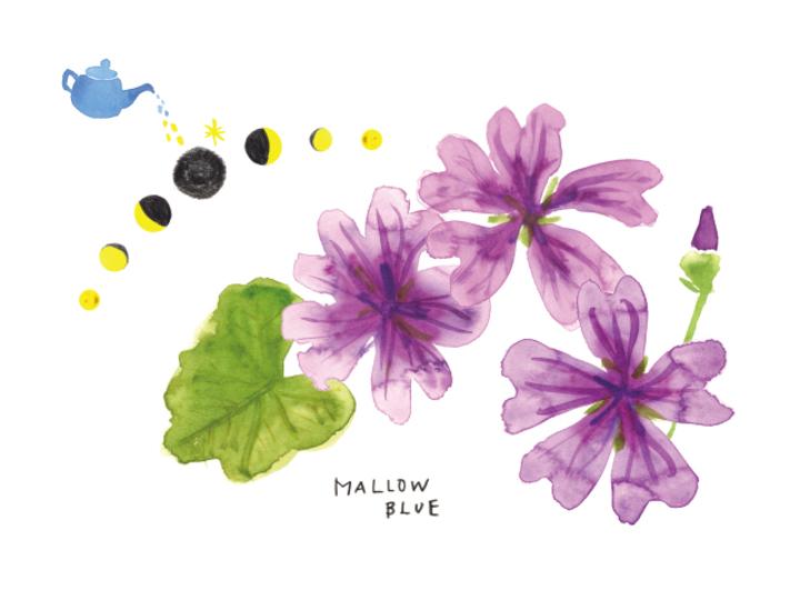 【11月の新月】来春をイメージして行動をおこすタイミング