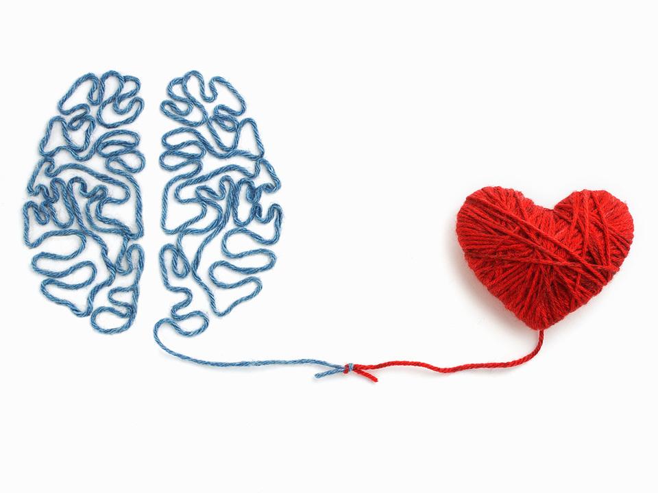 毛糸で作った脳とハート