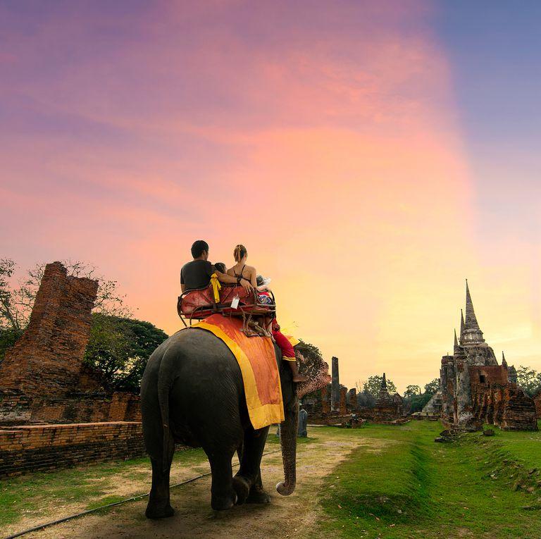 象に乗る人