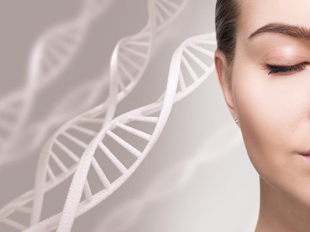 肌とDNA