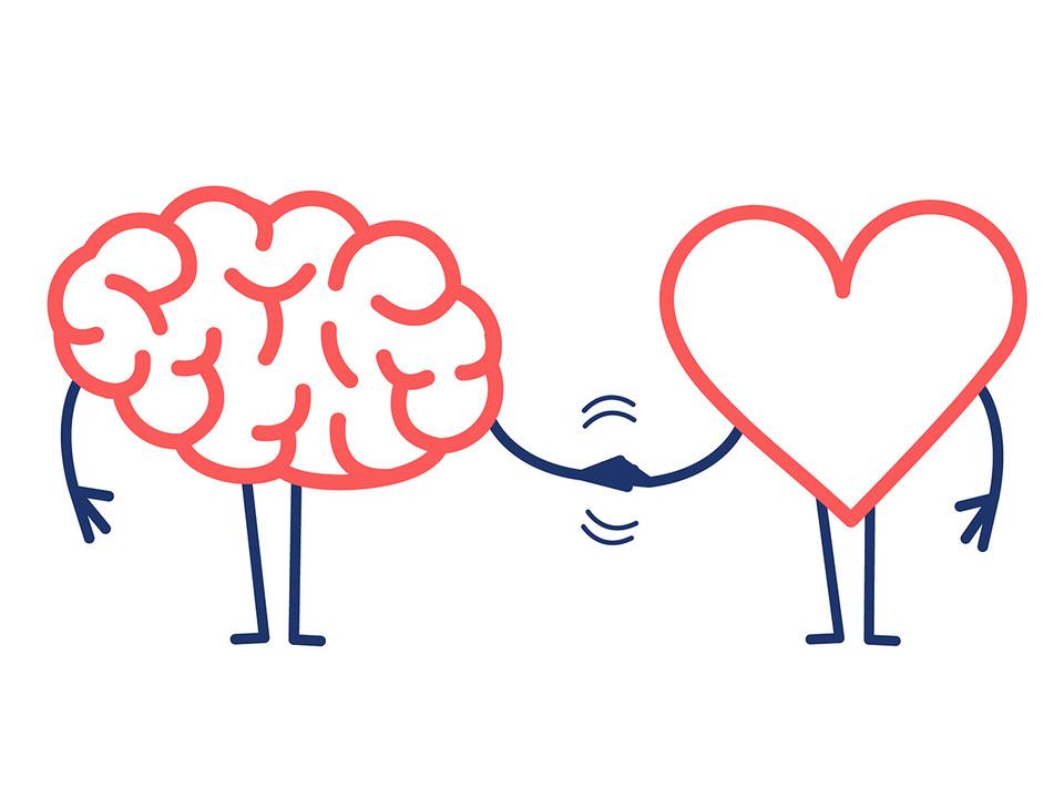 握手する脳と心臓
