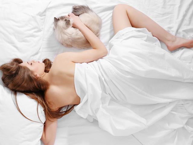 猫と眠る女性