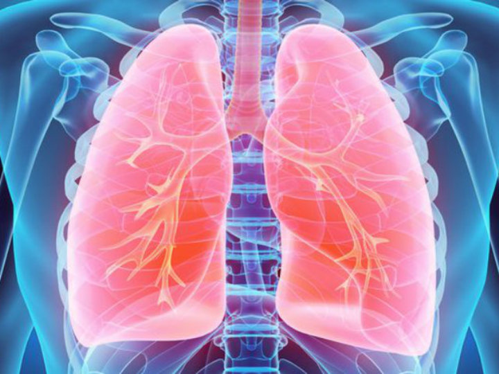 肺がんにならないために、今日からできること10