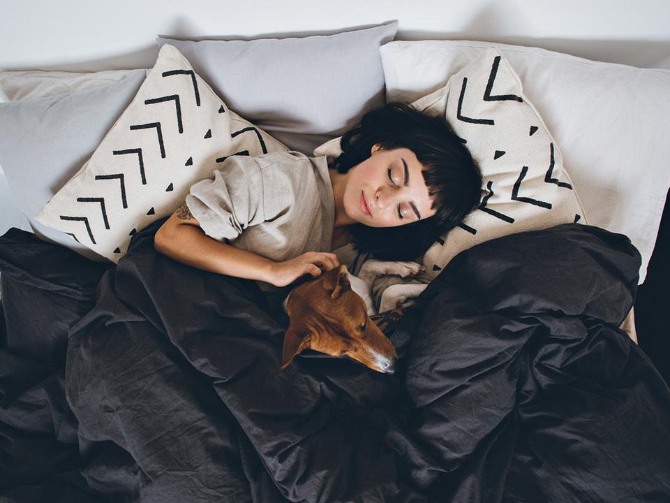 犬と眠る女性