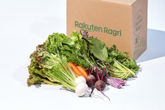 野菜セット(Sサイズ)