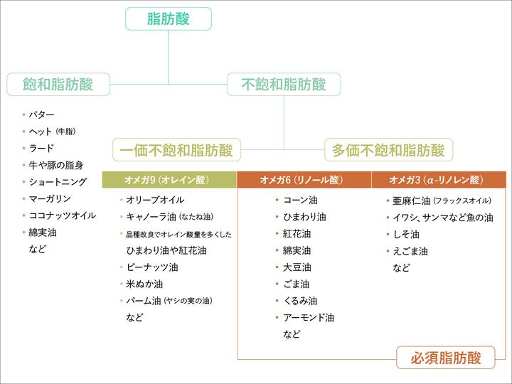 油の分類の図