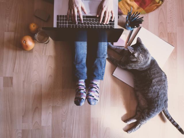 パソコンする人