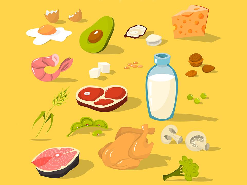 高タンパク質な食材