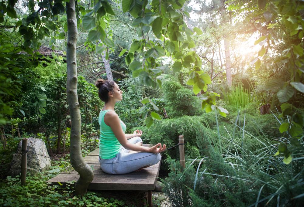 森の中で瞑想する女性