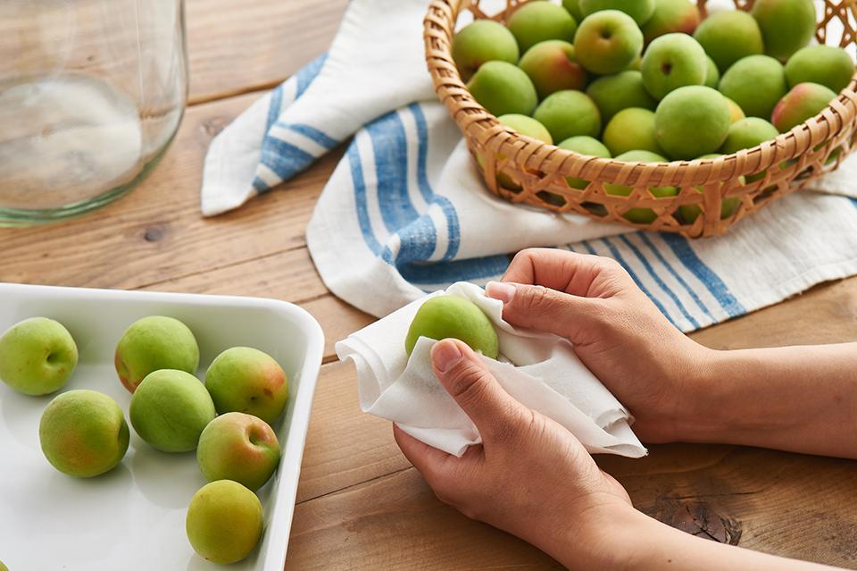 梅しごと。梅を拭く