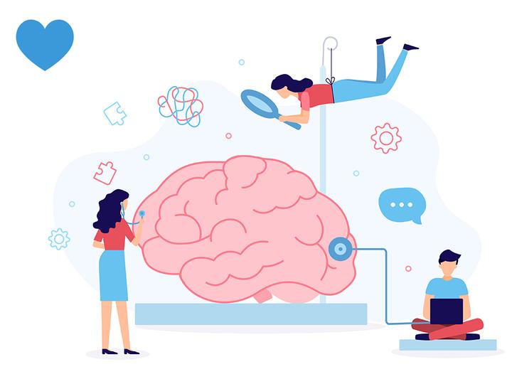 脳を見る人々