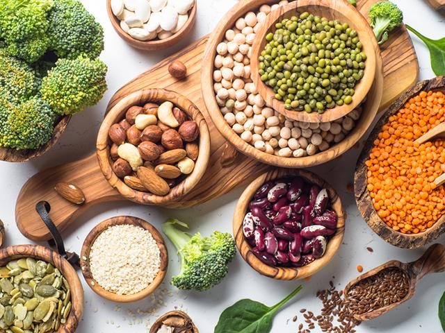 タンパク質を含む食材