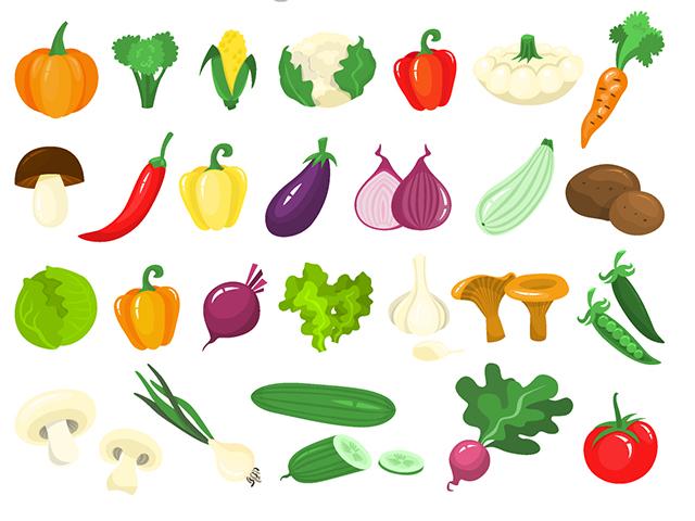 野菜、きのこ、海藻、芋