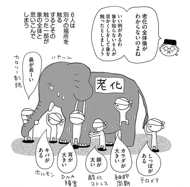 象のたとえ