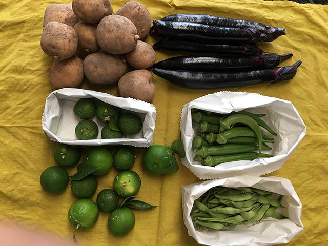 岡山の野菜