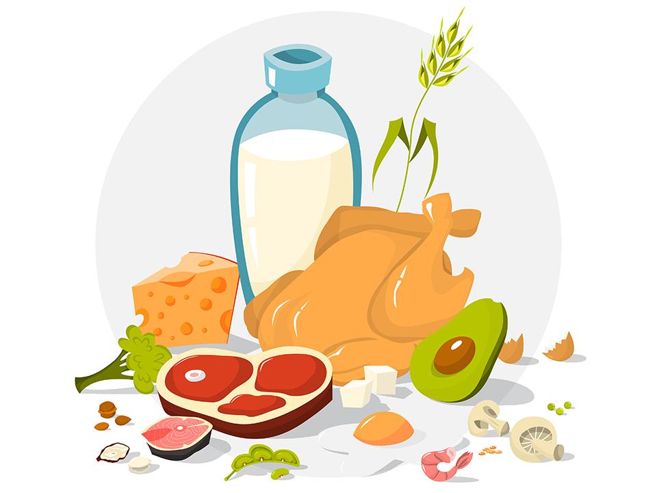 タンパク質豊富な食材