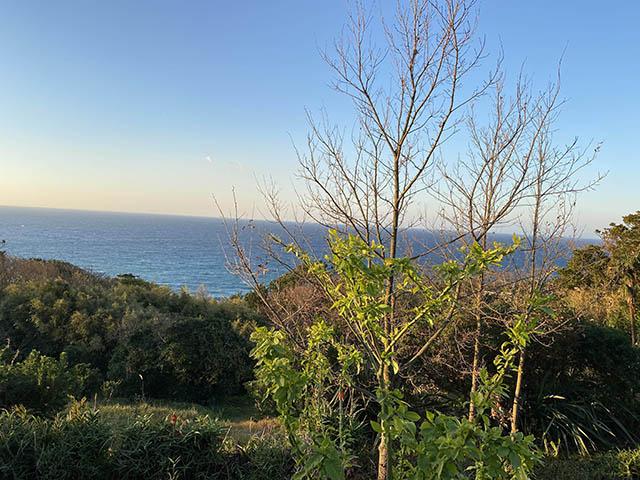 青い空・青い海