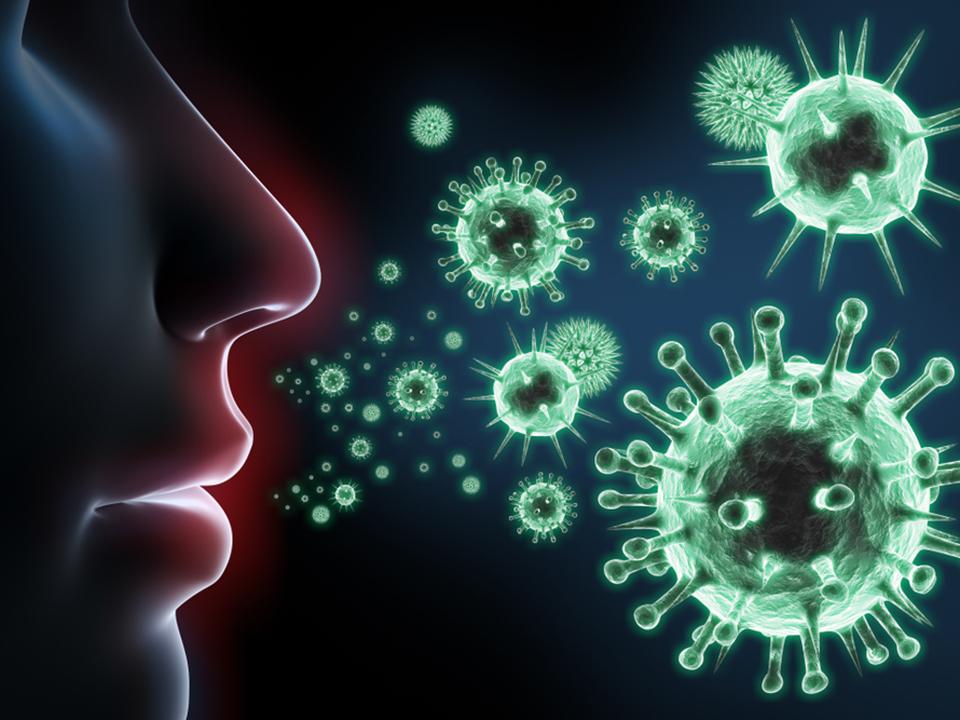 免疫力とウイルス