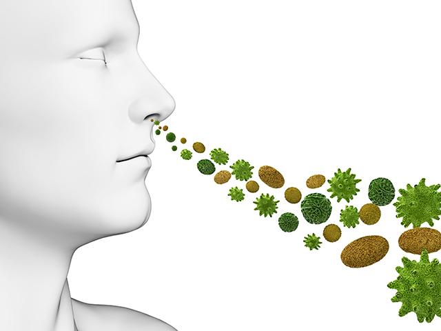 花粉を吸い込むメカニズム