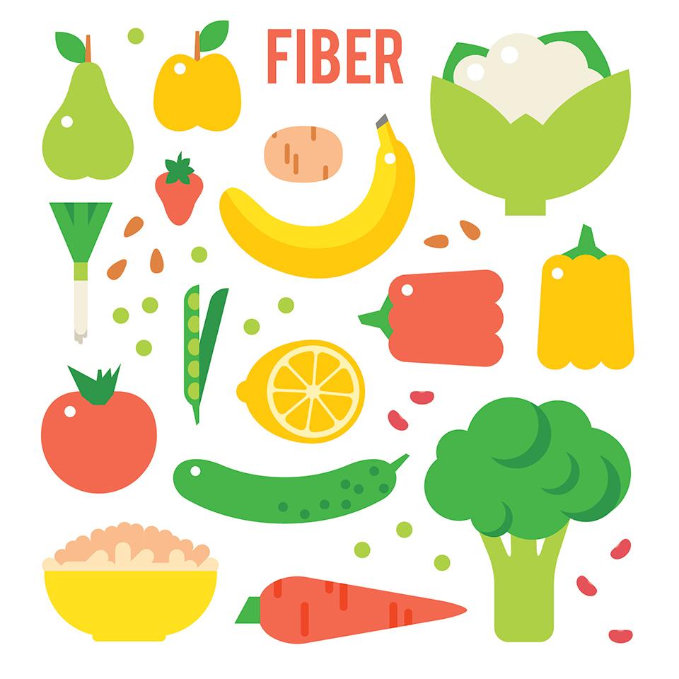 食物繊維が豊富な食材