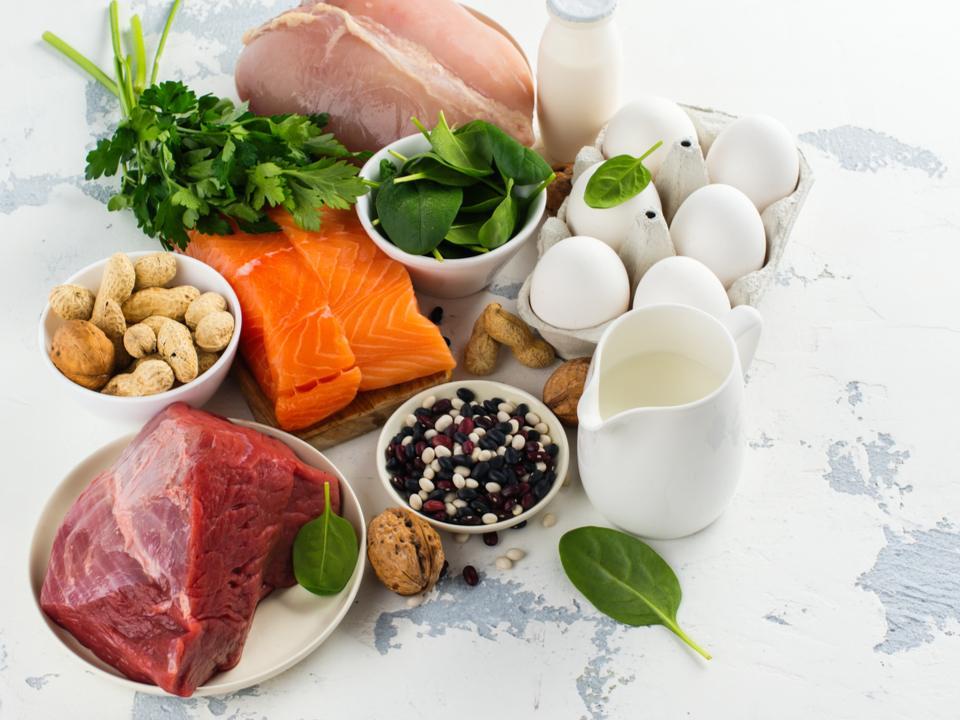 タンパク質の豊富な食材