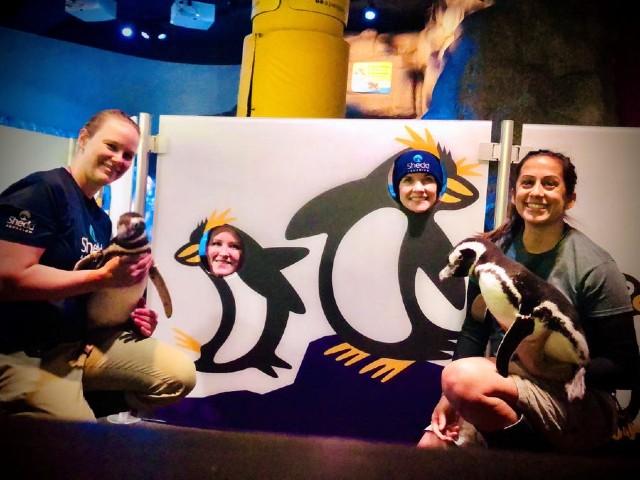 飼育員とペンギン