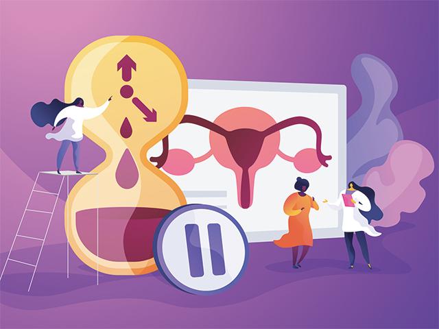 卵巣と女性ホルモン